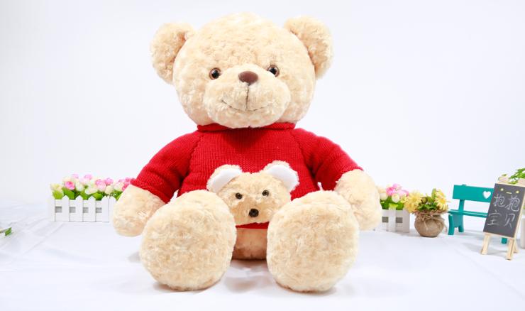 真实小熊图片 可爱